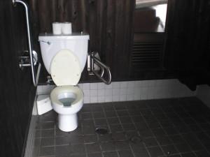Inside the multipurpose bathroom