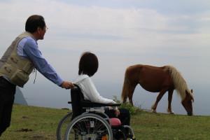 Matengai Cliffs and a horse