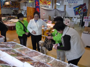 Shopping at the Shimane Fish Center