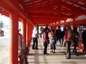 Walking on the path to Itsukushima Shrine